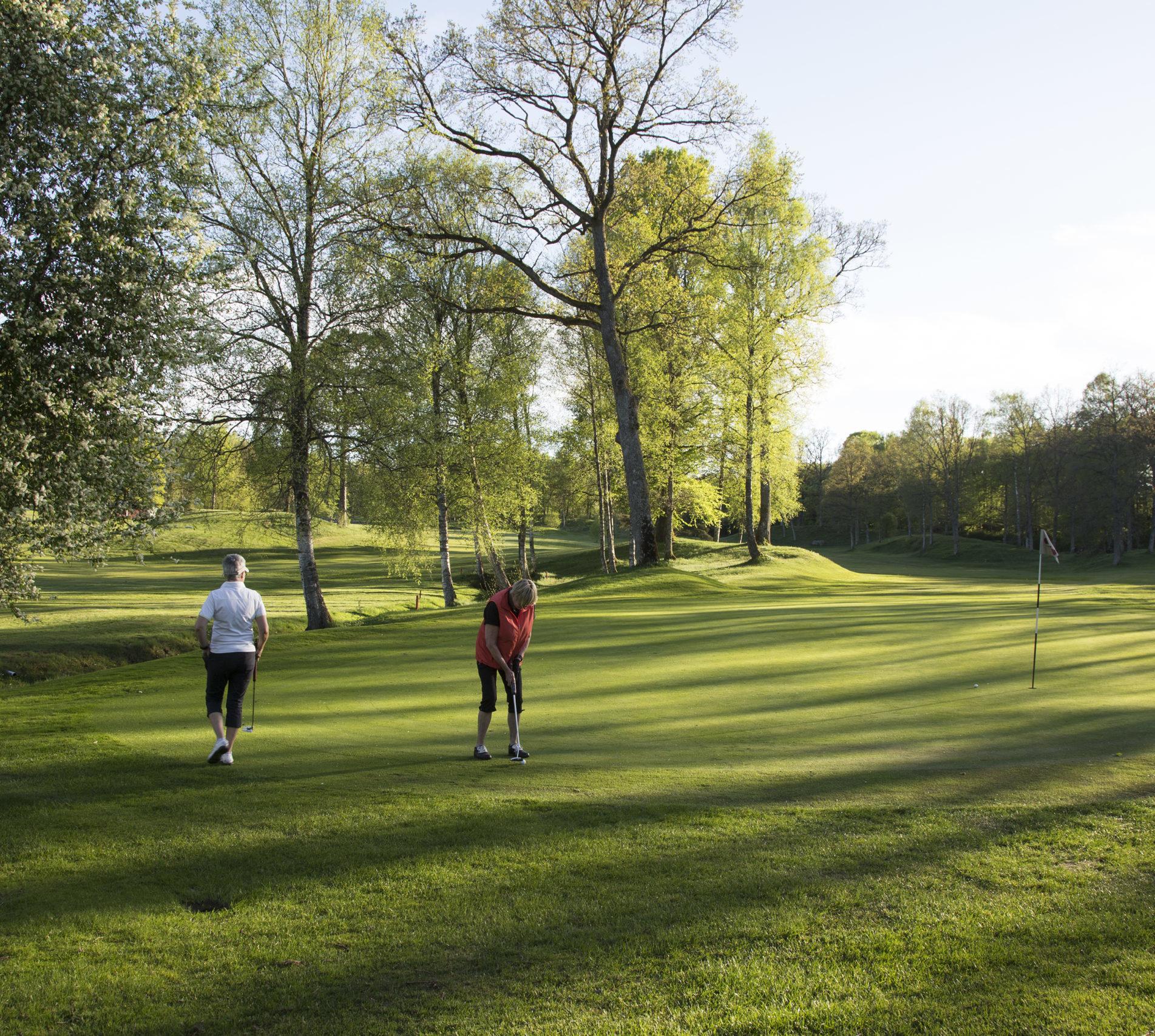 Golfbanor i Skåne | Wittsjö GK