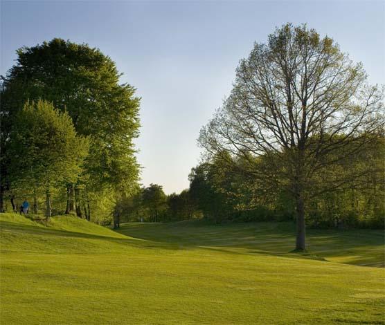 Skogsbana i Skåne Wittsjö Golfklubb